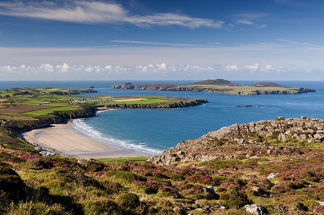 Campaigners Behind St Davids UK City of Culture Bid Appeal for Support