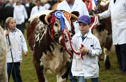 <strong>1st July &#8211; Monmouthshire</strong> <br>Monmouthshire Show