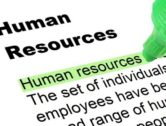 HR Consultants, What are They Good For?